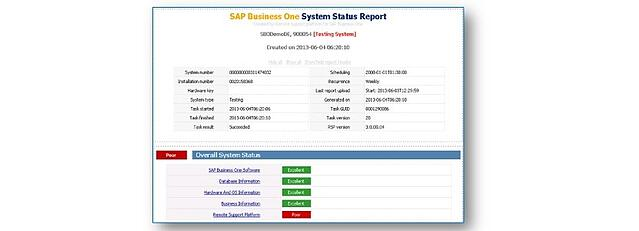 SAP Business One Remote Support Platform Status Report Example